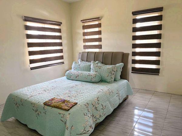 Reenex Curtain Design Zebra Blinds H1